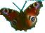 Hiekkaharjun HierontaPiste logo